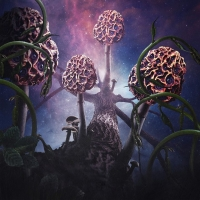BLUT AUS NORD – Hallucinogen  (Debemur Morti Production/2019)