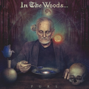 IN THE WOODS... - Pure (Debemur Morti Productions)