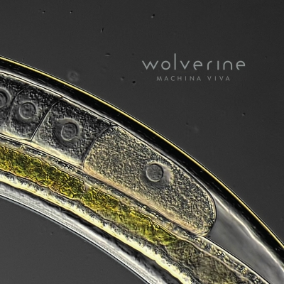 WOLVERINE – Machina Viva (Laser's Edge/Sensory Records)